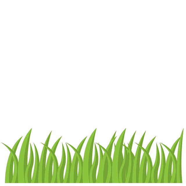 grass-2351893_640